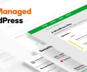 GoDaddy Launches Pro Wordpress Sites
